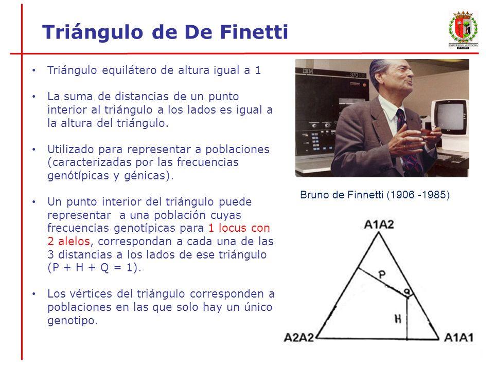 La distancia del punto de población a la base del triángulo (representa la frecuencia de heterocigotos que hay en esa población), divide a la base del triángulo en dos segmentos que son proporcionales a las frecuencias génicas.