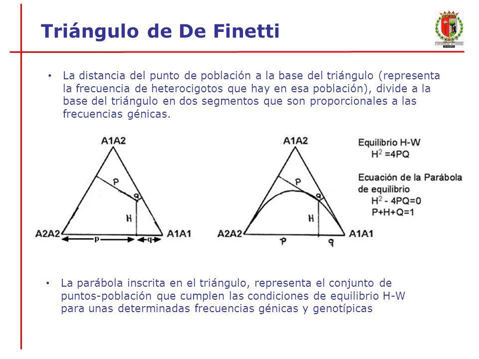 A1 A2 Frecuencias génicas 0.6 0.4 A1A1 A1A2 A2A2 Frecuencias genotípicas 0.45 0.30 0.25 Atajo: Para representar una población en el triángulo de De Finetti, basta con tener la frecuencia de uno de los alelos y la frecuencia de heterocigotos para ese alelo Triángulo de De Finetti Ejemplo: