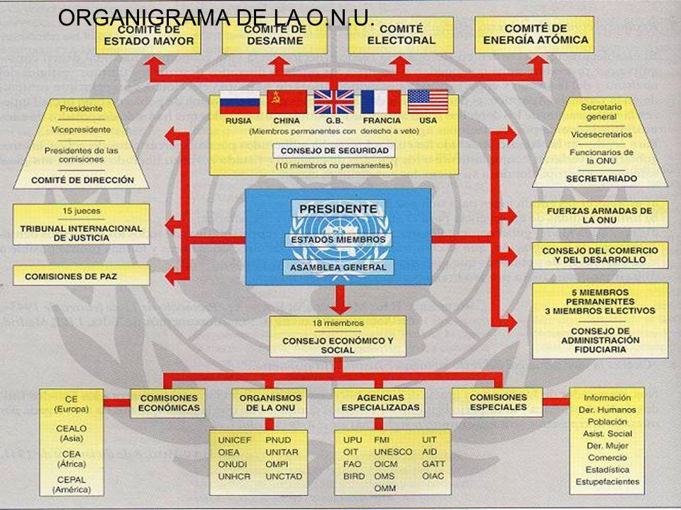 ORGANIGRAMA DE LA O.N.U.