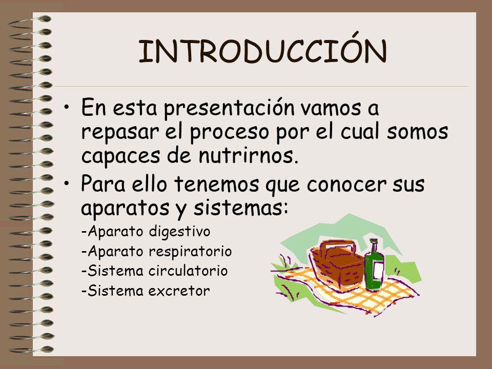 INTRODUCCIÓN En esta presentación vamos a repasar el proceso por el cual somos capaces de nutrirnos. Para ello tenemos que conocer sus aparatos y sist