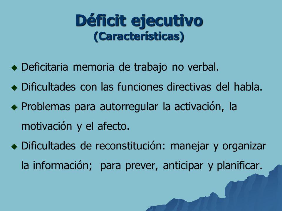Deficitaria memoria de trabajo no verbal. Dificultades con las funciones directivas del habla. Problemas para autorregular la activación, la motivació