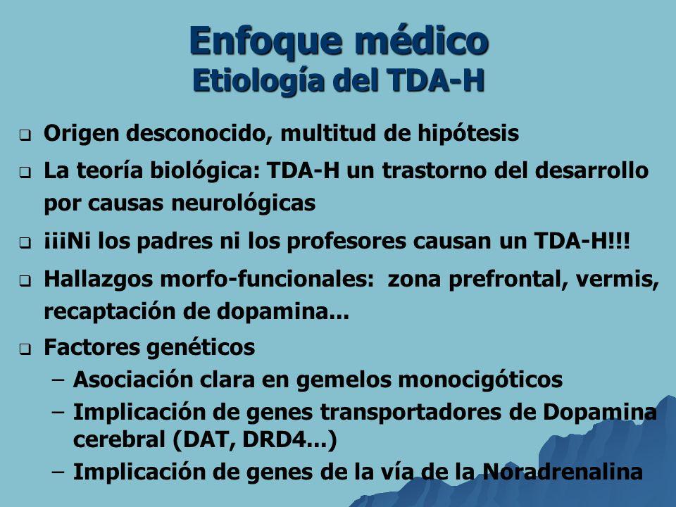 Enfoque médico Etiología del TDA-H Origen desconocido, multitud de hipótesis La teoría biológica: TDA-H un trastorno del desarrollo por causas neuroló