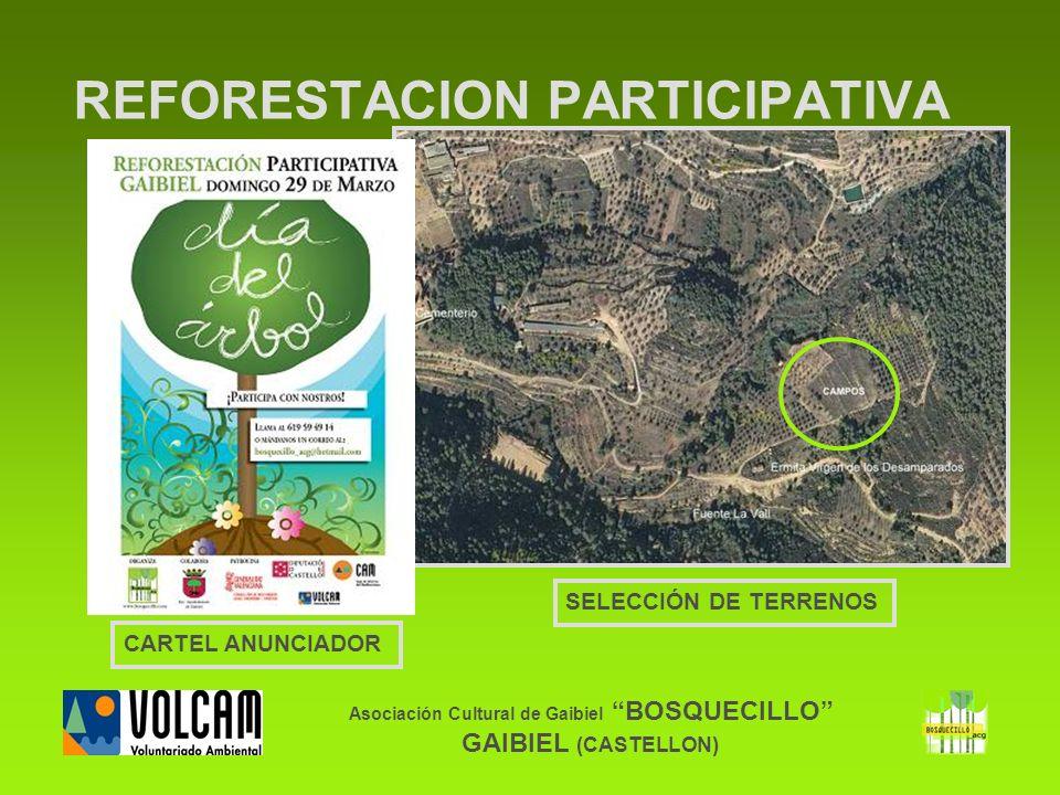 SELECCIÓN DE TERRENOS Asociación Cultural de Gaibiel BOSQUECILLO GAIBIEL (CASTELLON) REFORESTACION PARTICIPATIVA CARTEL ANUNCIADOR