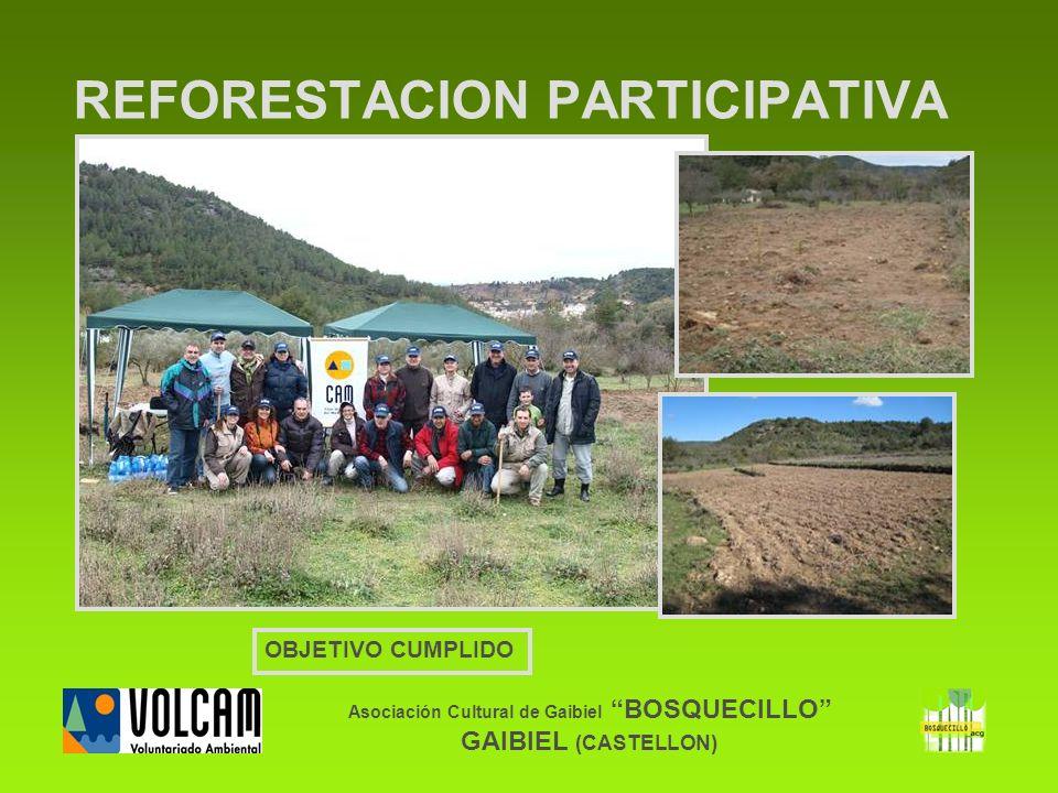 Asociación Cultural de Gaibiel BOSQUECILLO GAIBIEL (CASTELLON) REFORESTACION PARTICIPATIVA OBJETIVO CUMPLIDO