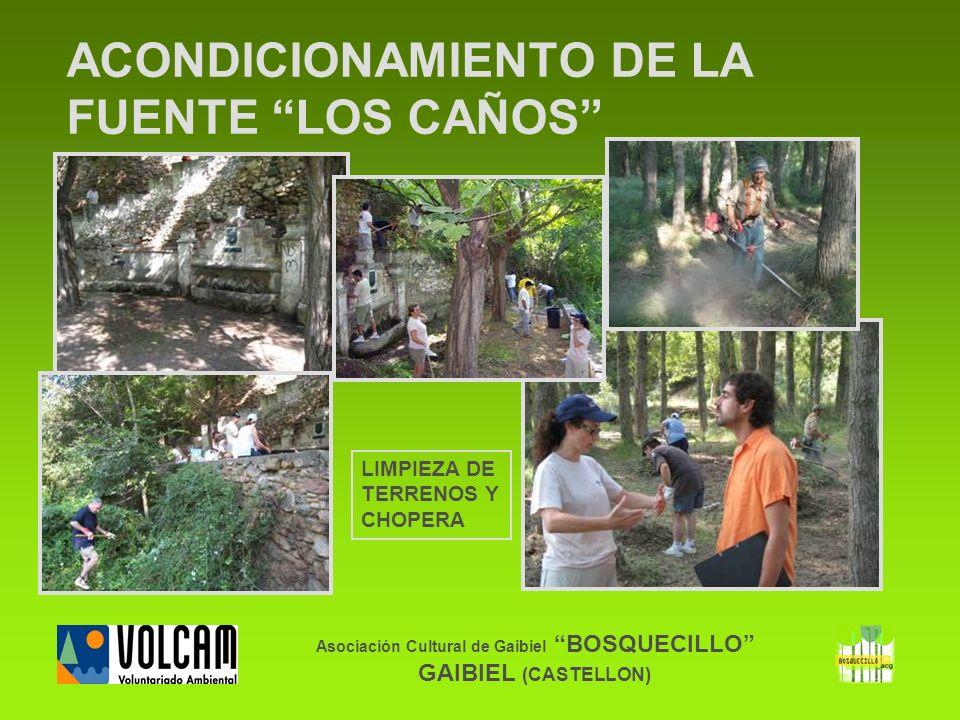 Asociación Cultural de Gaibiel BOSQUECILLO GAIBIEL (CASTELLON) ACONDICIONAMIENTO DE LA FUENTE LOS CAÑOS LIMPIEZA DE TERRENOS Y CHOPERA