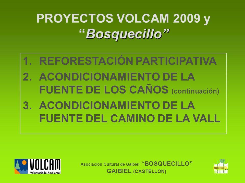 Asociación Cultural de Gaibiel BOSQUECILLO GAIBIEL (CASTELLON) Bosquecillo PROYECTOS VOLCAM 2009 yBosquecillo 1.REFORESTACIÓN PARTICIPATIVA 2.ACONDICI