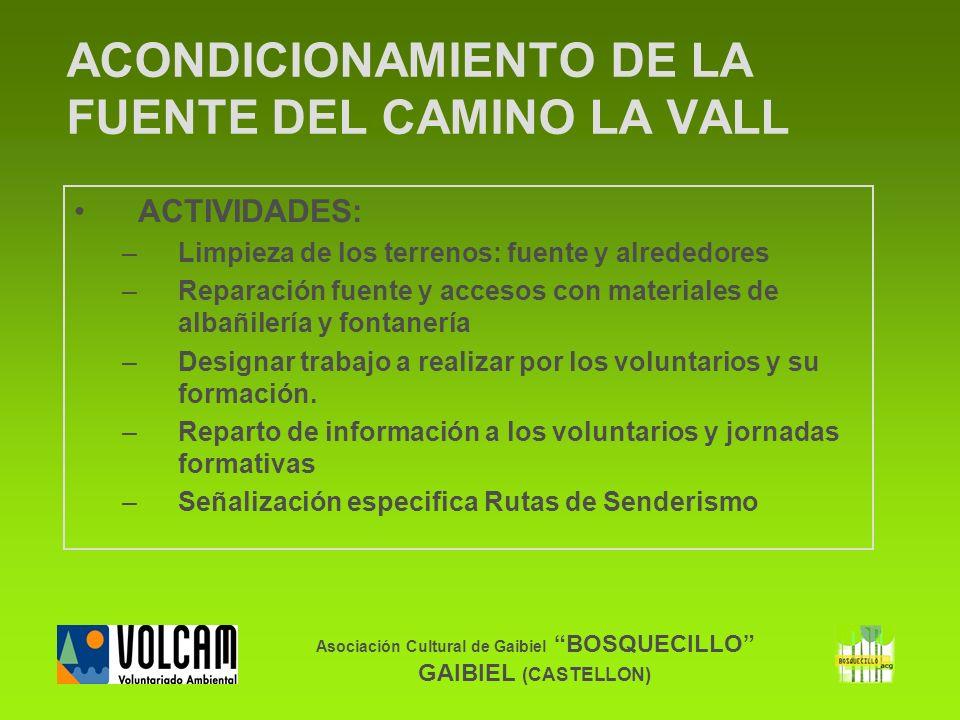 Asociación Cultural de Gaibiel BOSQUECILLO GAIBIEL (CASTELLON) ACONDICIONAMIENTO DE LA FUENTE DEL CAMINO LA VALL ACTIVIDADES: –Limpieza de los terreno