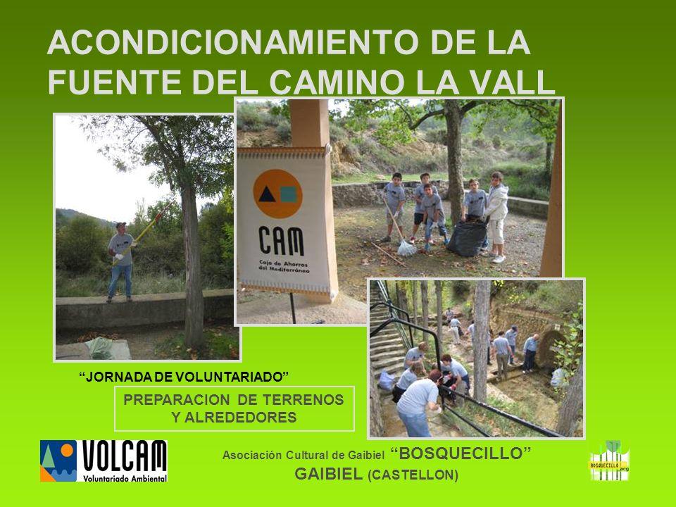 Asociación Cultural de Gaibiel BOSQUECILLO GAIBIEL (CASTELLON) ACONDICIONAMIENTO DE LA FUENTE DEL CAMINO LA VALL PREPARACION DE TERRENOS Y ALREDEDORES