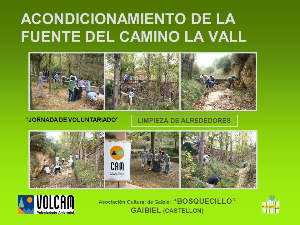 Asociación Cultural de Gaibiel BOSQUECILLO GAIBIEL (CASTELLON) ACONDICIONAMIENTO DE LA FUENTE DEL CAMINO LA VALL LIMPIEZA DE ALREDEDORES JORNADA DE VO