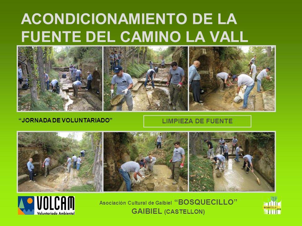 Asociación Cultural de Gaibiel BOSQUECILLO GAIBIEL (CASTELLON) ACONDICIONAMIENTO DE LA FUENTE DEL CAMINO LA VALL LIMPIEZA DE FUENTE JORNADA DE VOLUNTA