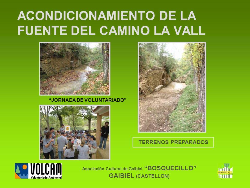 Asociación Cultural de Gaibiel BOSQUECILLO GAIBIEL (CASTELLON) ACONDICIONAMIENTO DE LA FUENTE DEL CAMINO LA VALL TERRENOS PREPARADOS JORNADA DE VOLUNT