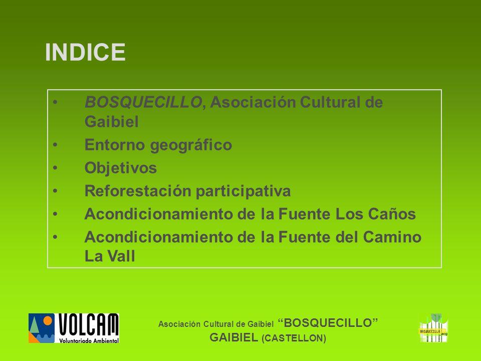 Asociación Cultural de Gaibiel BOSQUECILLO GAIBIEL (CASTELLON) INDICE BOSQUECILLO, Asociación Cultural de Gaibiel Entorno geográfico Objetivos Refores