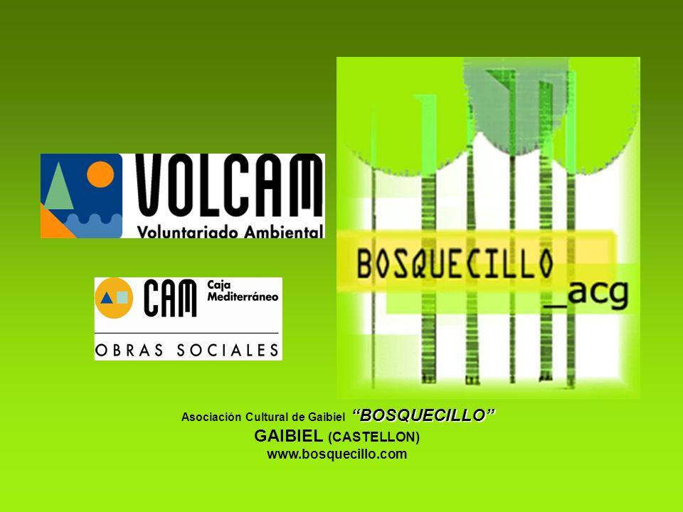 BOSQUECILLO Asociación Cultural de Gaibiel BOSQUECILLO GAIBIEL (CASTELLON) www.bosquecillo.com