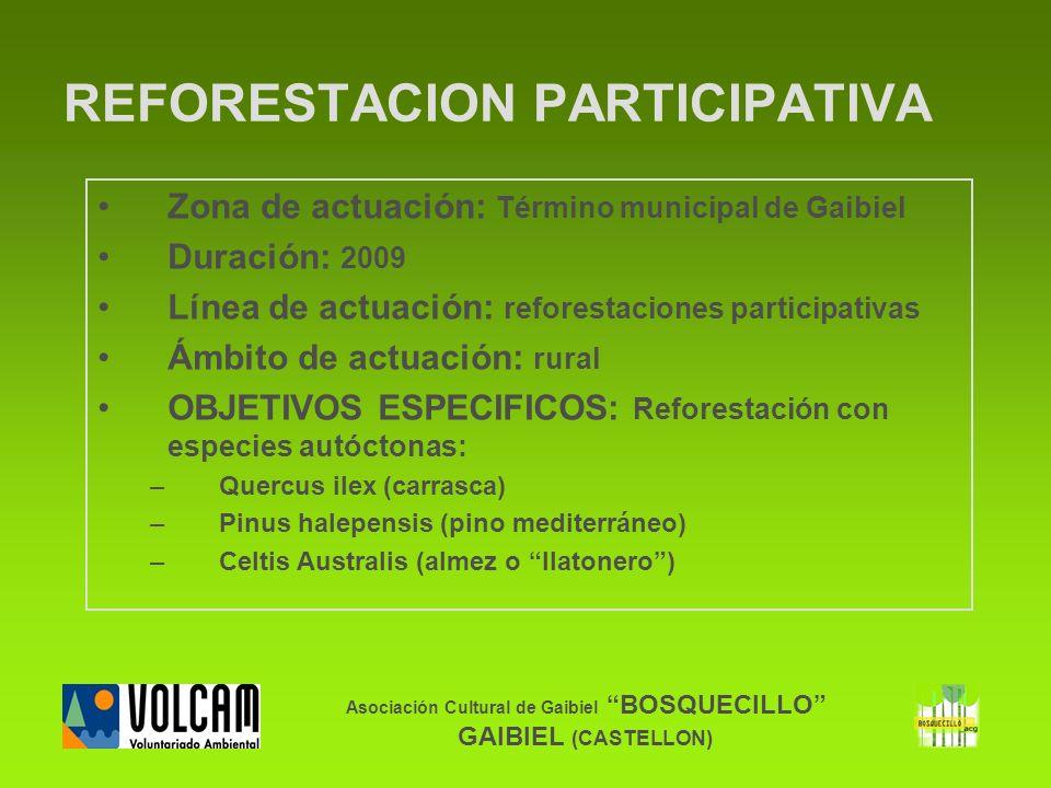 Asociación Cultural de Gaibiel BOSQUECILLO GAIBIEL (CASTELLON) Zona de actuación: Término municipal de Gaibiel Duración: 2009 Línea de actuación: refo