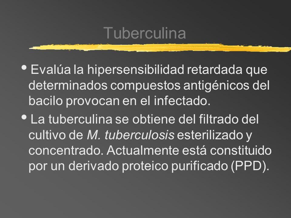 Tuberculina Evalúa la hipersensibilidad retardada que determinados compuestos antigénicos del bacilo provocan en el infectado. La tuberculina se obtie
