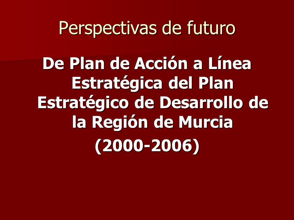 Perspectivas de futuro De Plan de Acción a Línea Estratégica del Plan Estratégico de Desarrollo de la Región de Murcia (2000-2006)