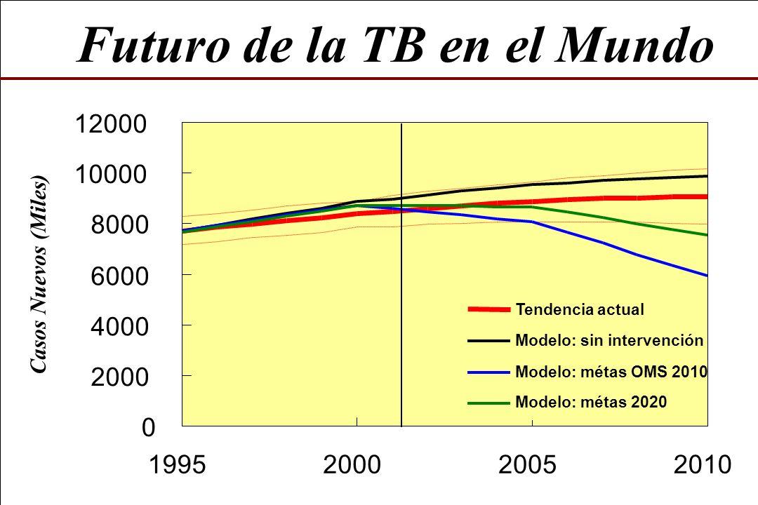 Futuro de la TB en el Mundo 0 2000 4000 6000 8000 10000 12000 1995200020052010 Casos Nuevos (Miles) Tendencia actual Modelo: sin intervención Modelo: