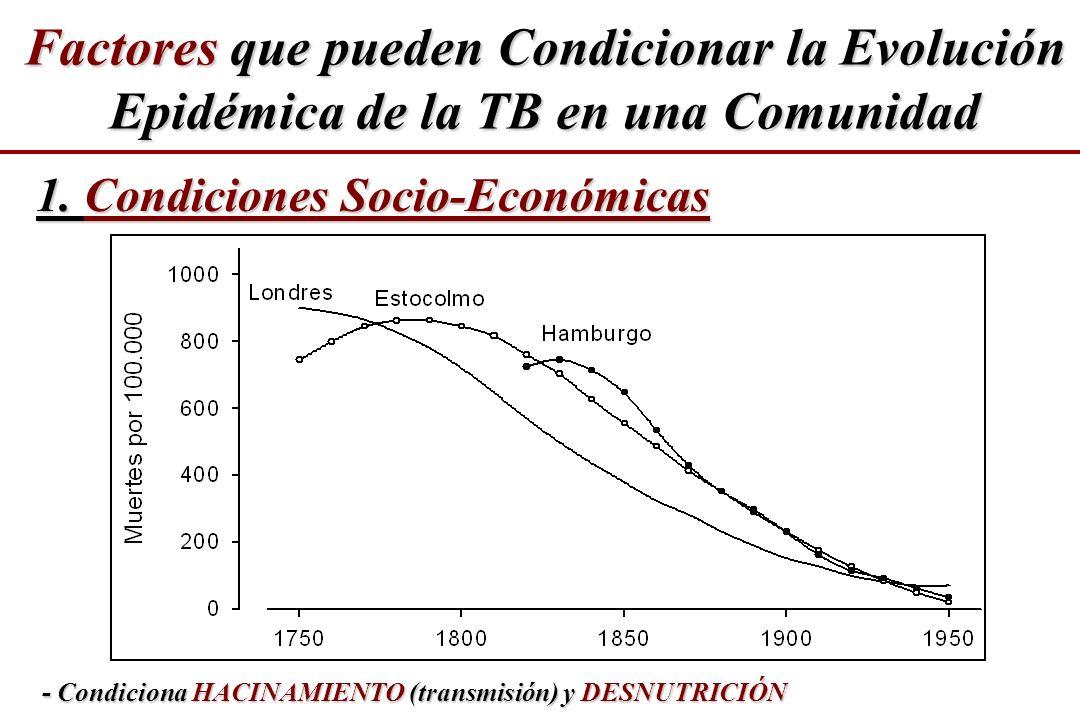 - Condiciona HACINAMIENTO (transmisión) y DESNUTRICIÓN 1. Condiciones Socio-Económicas Factores que pueden Condicionar la Evolución Epidémica de la TB