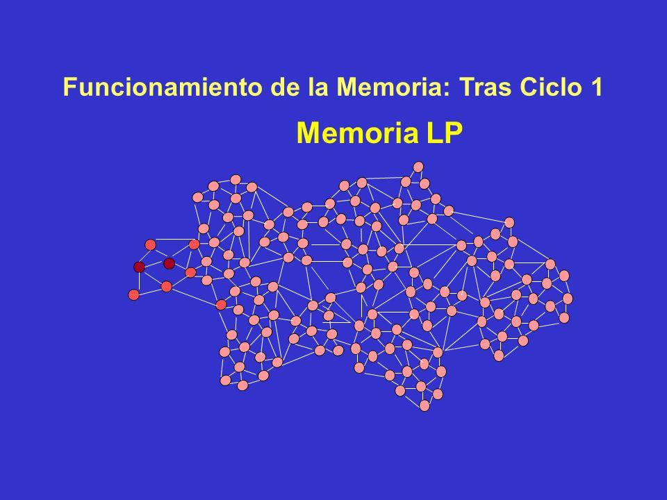 Funcionamiento de la Memoria: Ciclo 1 Memoria LP M T