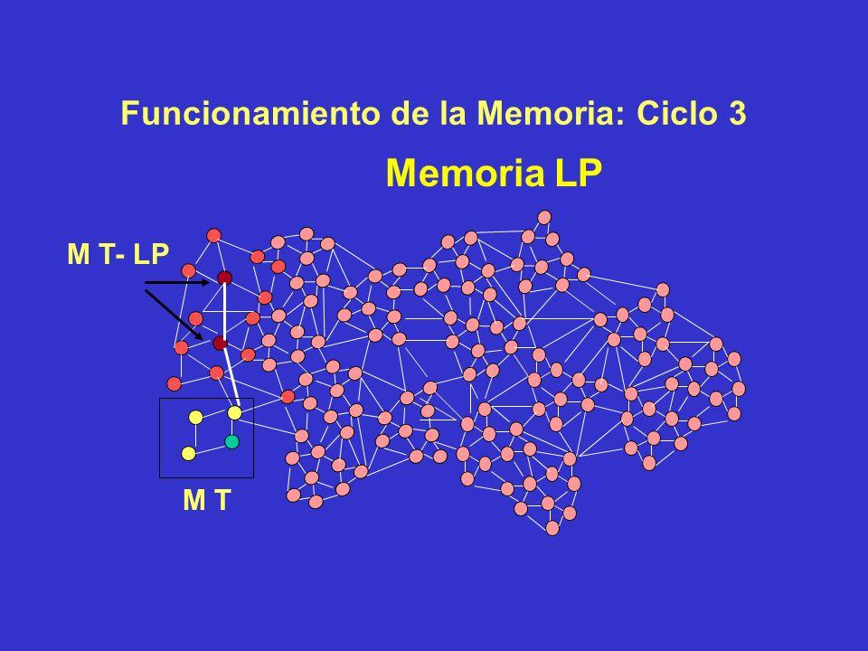 Funcionamiento de la Memoria: Ciclo 2 Memoria LP M T M T- LP