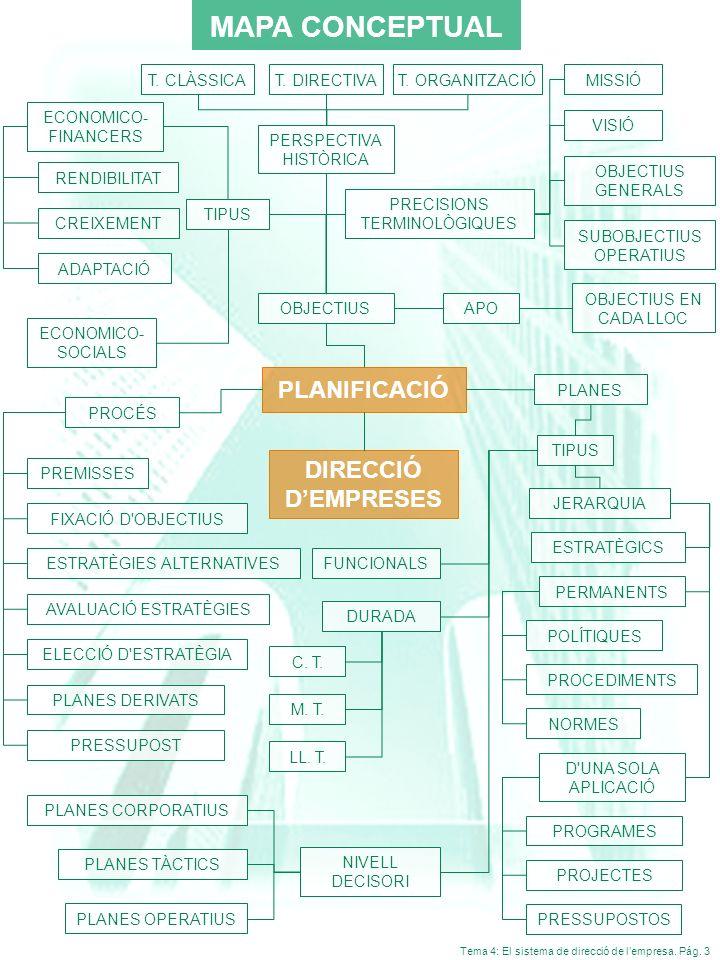 Tema 4: El sistema de direcció de lempresa. Pág. 3 MAPA CONCEPTUAL JERARQUIA D'UNA SOLA APLICACIÓ PROCÉS ESTRATÈGICS PROGRAMES PROJECTES DIRECCIÓ DEMP