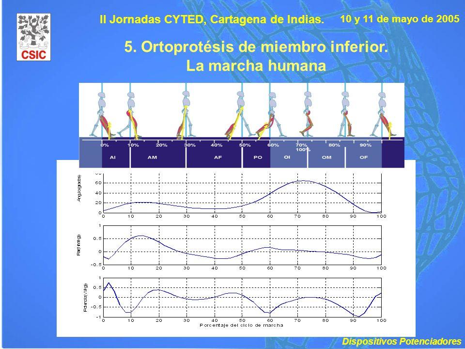 10 y 11 de mayo de 2005 II Jornadas CYTED, Cartagena de Indias. 5. Ortoprotésis de miembro inferior. La marcha humana Dispositivos Potenciadores