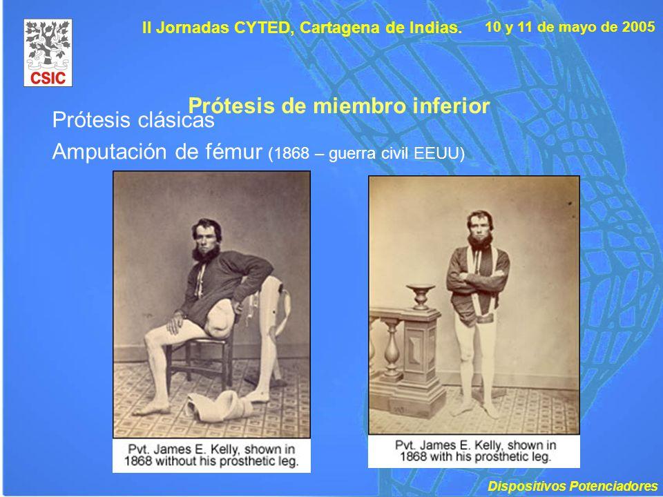10 y 11 de mayo de 2005 II Jornadas CYTED, Cartagena de Indias. Prótesis de miembro inferior Prótesis clásicas Amputación de fémur (1868 – guerra civi