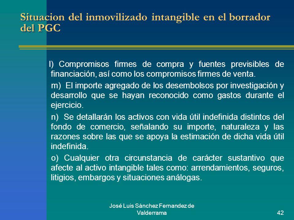 José Luis Sánchez Fernandez de Valderrama42 Situacion del inmovilizado intangible en el borrador del PGC l) Compromisos firmes de compra y fuentes pre
