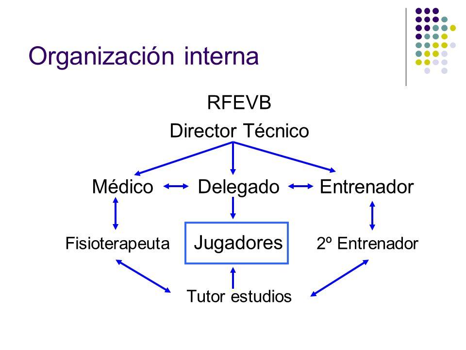 Organización interna RFEVB Director Técnico Médico Delegado Entrenador Fisioterapeuta Jugadores 2º Entrenador Tutor estudios