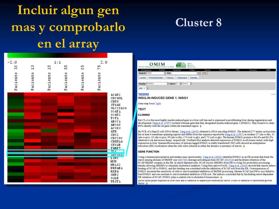 Cluster 8 Incluir algun gen mas y comprobarlo en el array