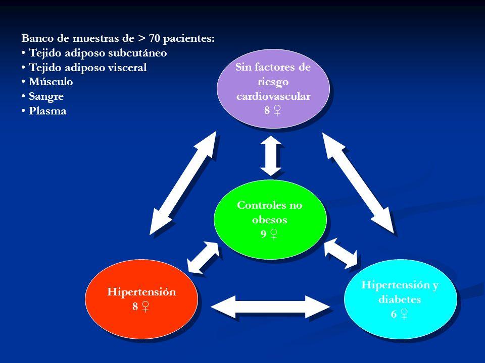 Hipertensión 8 Controles no obesos 9 Hipertensión y diabetes 6 Sin factores de riesgo cardiovascular 8 Banco de muestras de > 70 pacientes: Tejido adiposo subcutáneo Tejido adiposo visceral Músculo Sangre Plasma