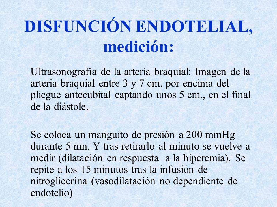 DISFUNCIÓN ENDOTELIAL, medición: Ultrasonografia de la arteria braquial: Imagen de la arteria braquial entre 3 y 7 cm. por encima del pliegue antecubi