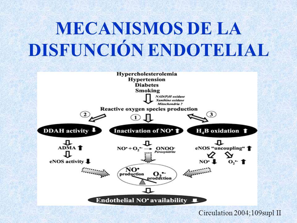 MECANISMOS DE LA DISFUNCIÓN ENDOTELIAL Circulation 2004;109supl II