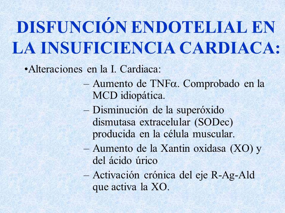 DISFUNCIÓN ENDOTELIAL EN LA INSUFICIENCIA CARDIACA: Alteraciones en la I. Cardiaca: –Aumento de TNF. Comprobado en la MCD idiopática. –Disminución de
