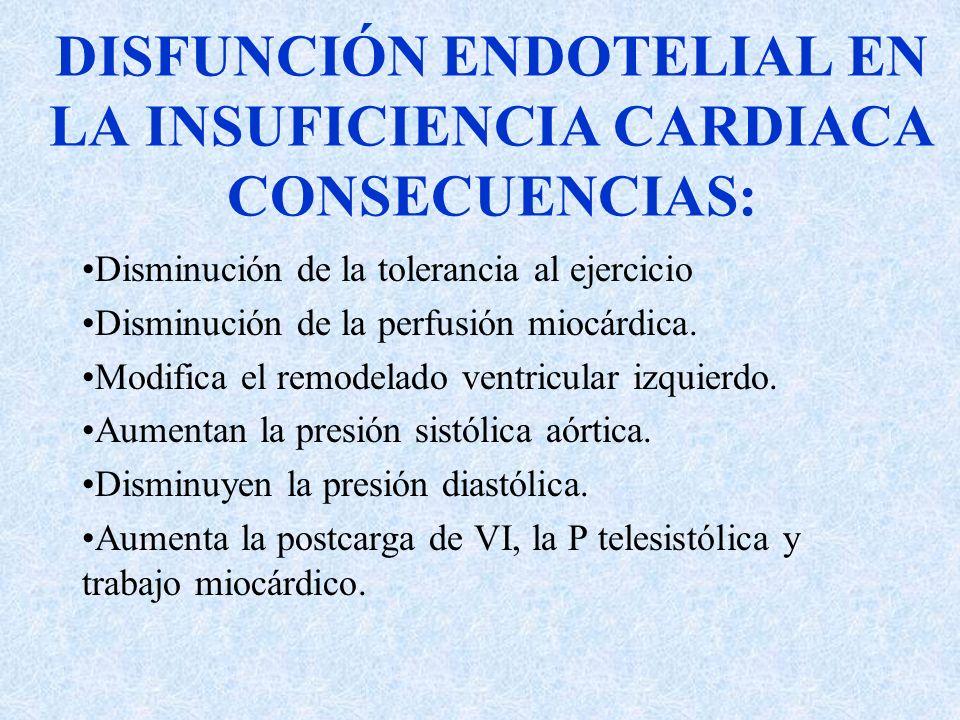 DISFUNCIÓN ENDOTELIAL EN LA INSUFICIENCIA CARDIACA CONSECUENCIAS: Disminución de la tolerancia al ejercicio Disminución de la perfusión miocárdica. Mo