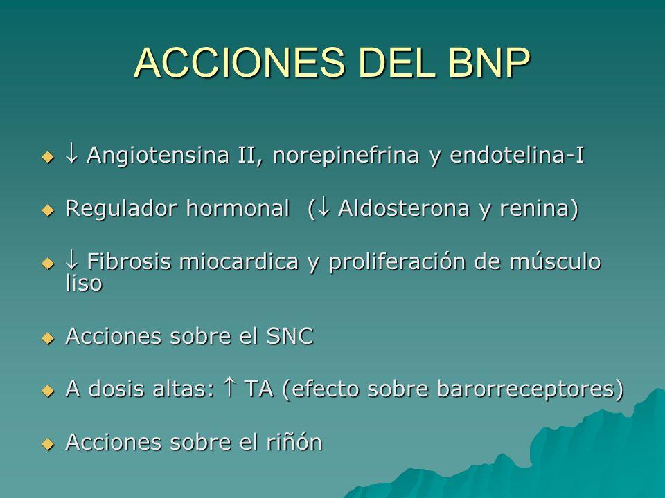 ACCIONES DEL BNP Angiotensina II, norepinefrina y endotelina-I Angiotensina II, norepinefrina y endotelina-I Regulador hormonal ( Aldosterona y renina