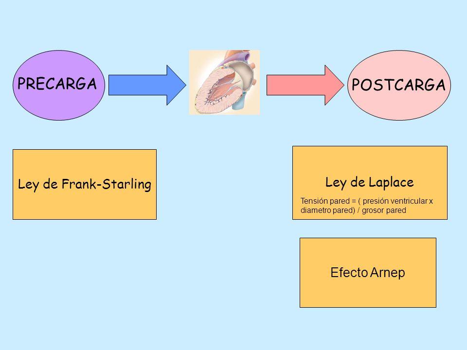PRECARGA POSTCARGA Ley de Frank-Starling Ley de Laplace Tensión pared = ( presión ventricular x diametro pared) / grosor pared Efecto Arnep