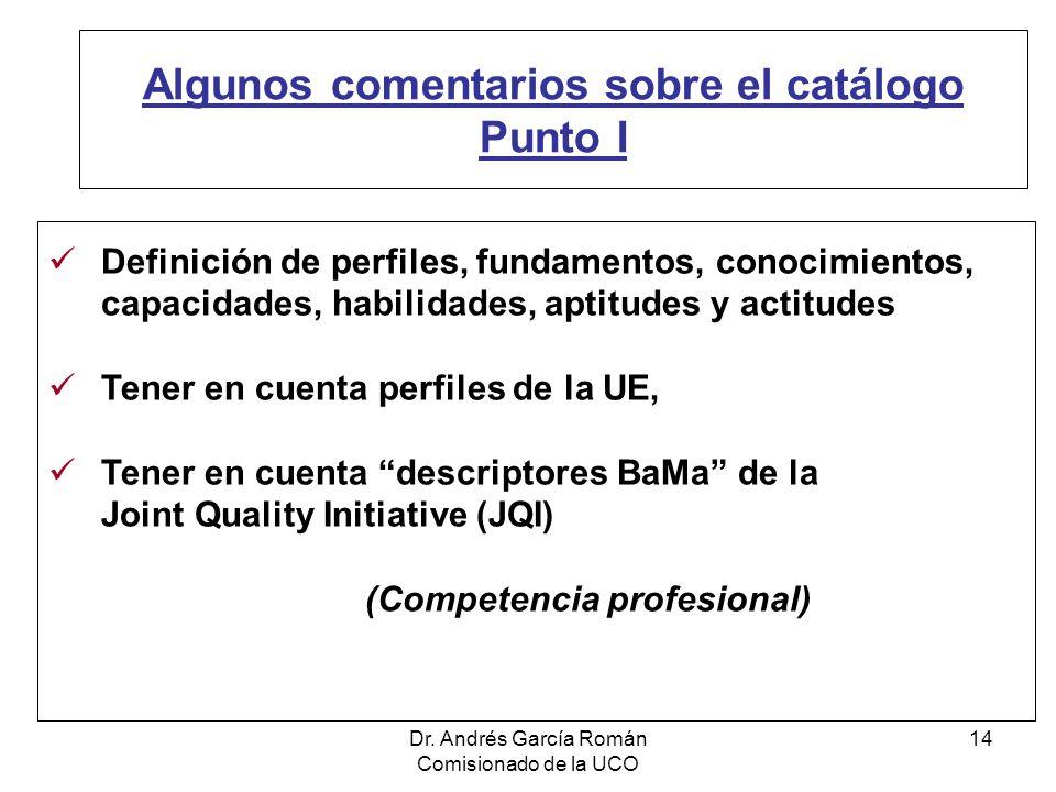 Dr. Andrés García Román Comisionado de la UCO 14 Algunos comentarios sobre el catálogo Punto I Definición de perfiles, fundamentos, conocimientos, cap