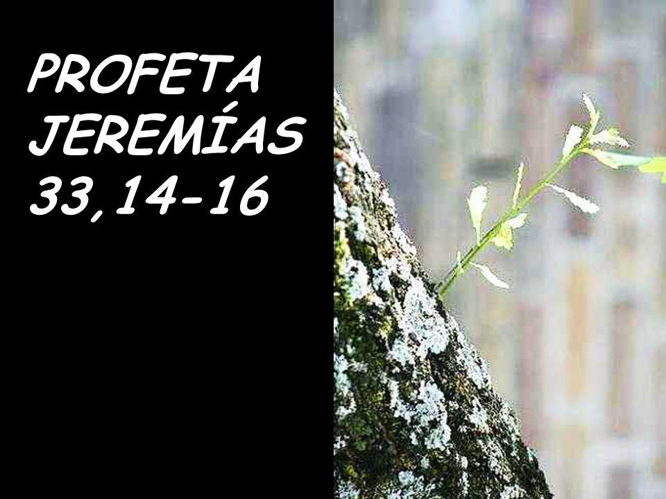 PROFETA JEREMÍAS 33,14-16