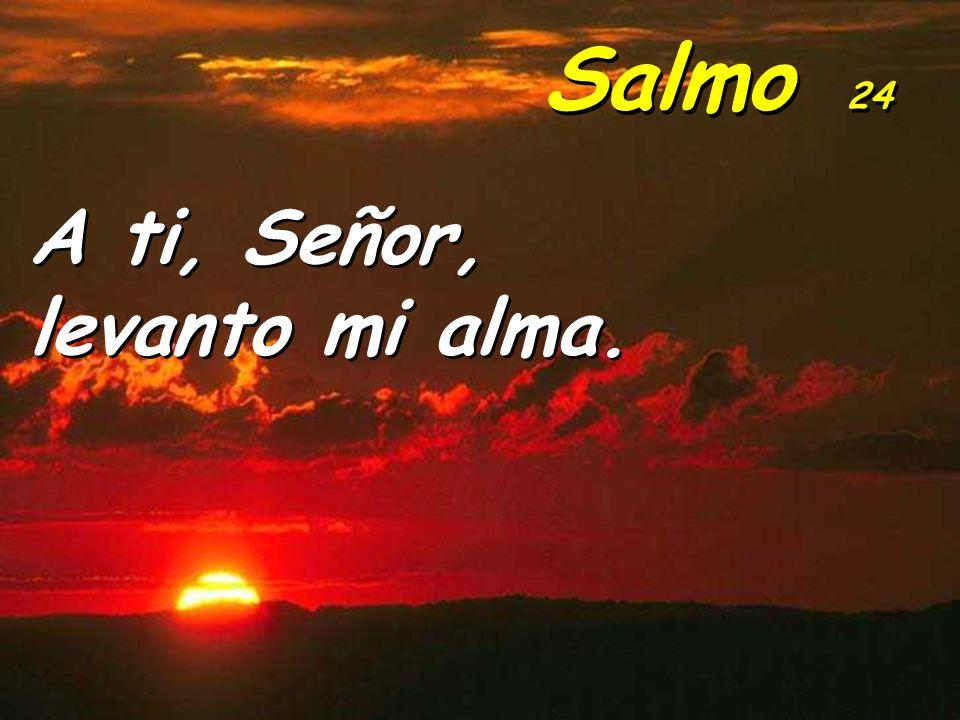 A ti, Señor, levanto mi alma. A ti, Señor, levanto mi alma. Salmo 24