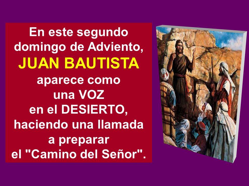 En este segundo domingo de Adviento, JUAN BAUTISTA aparece como una VOZ en el DESIERTO, haciendo una llamada a preparar el Camino del Señor .