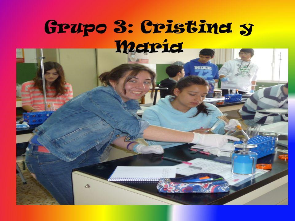 Grupo 4: David y Diego