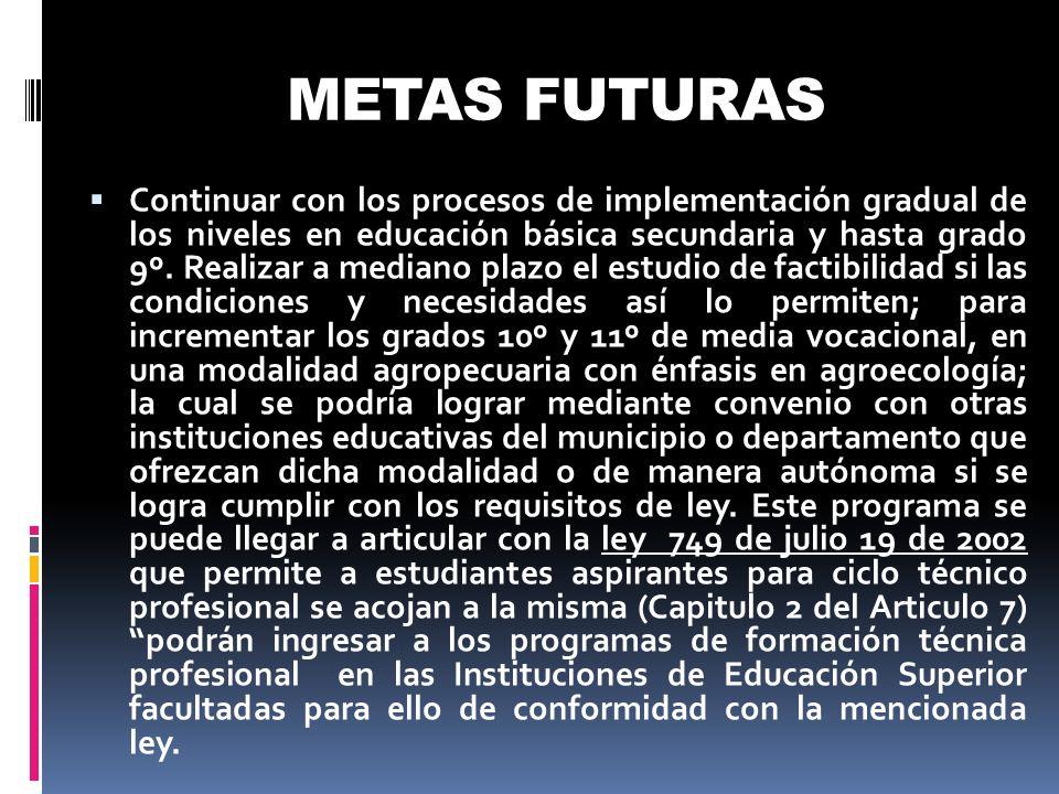 METAS FUTURAS Continuar con los procesos de implementación gradual de los niveles en educación básica secundaria y hasta grado 9º. Realizar a mediano