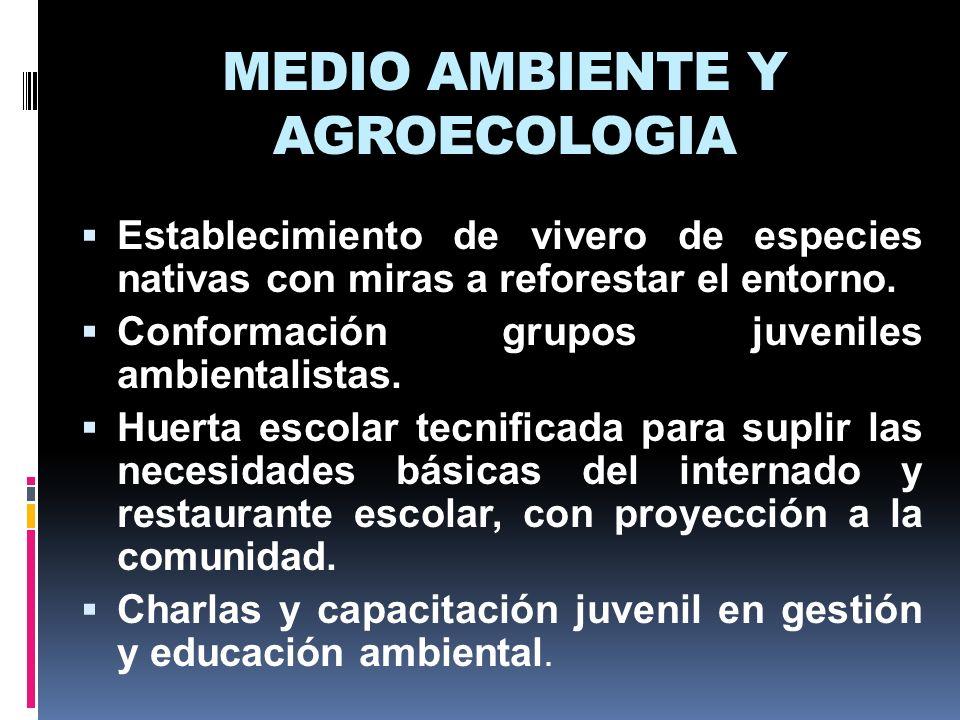 MEDIO AMBIENTE Y AGROECOLOGIA Establecimiento de vivero de especies nativas con miras a reforestar el entorno. Conformación grupos juveniles ambiental