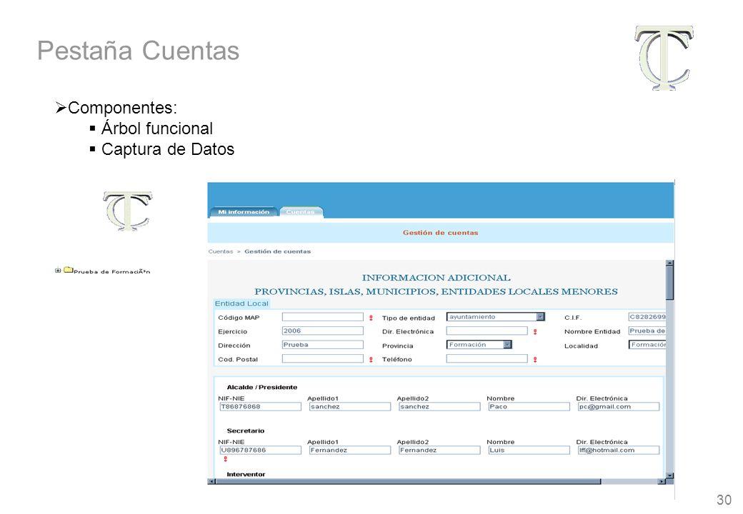 30 Componentes: Árbol funcional Captura de Datos Pestaña Cuentas