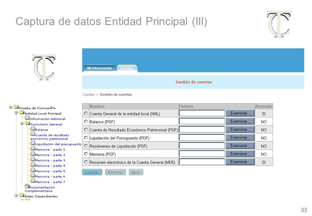 35 Captura de datos Entidad Principal (III)