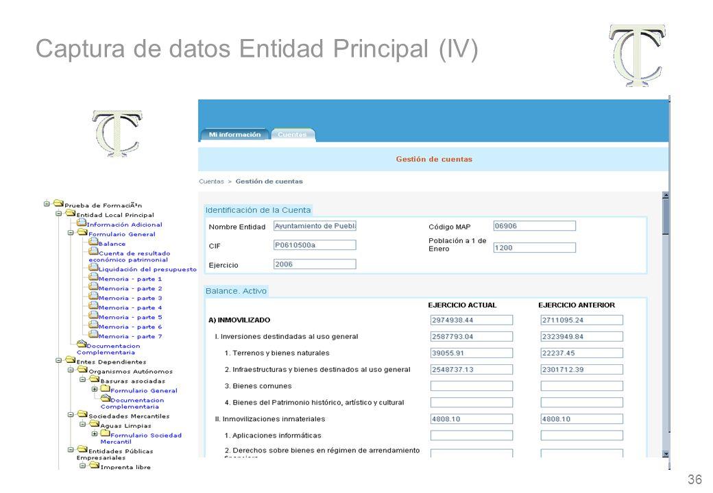 36 Captura de datos Entidad Principal (IV)