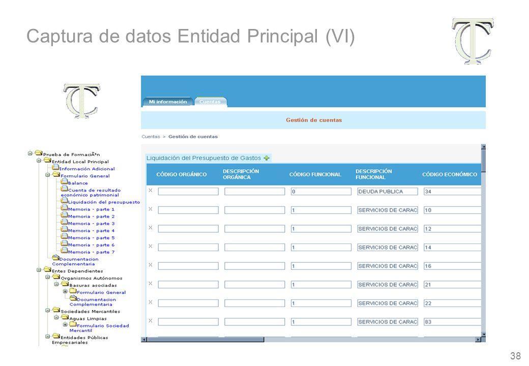 38 Captura de datos Entidad Principal (VI)