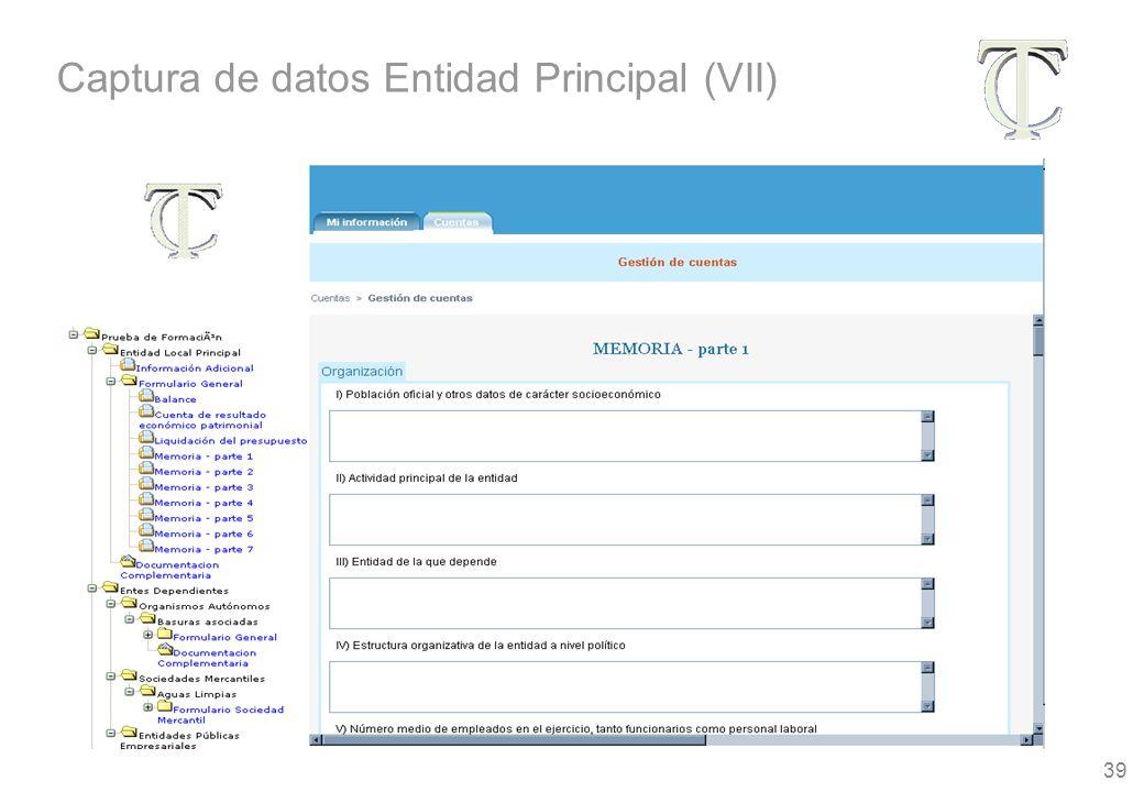 39 Captura de datos Entidad Principal (VII)