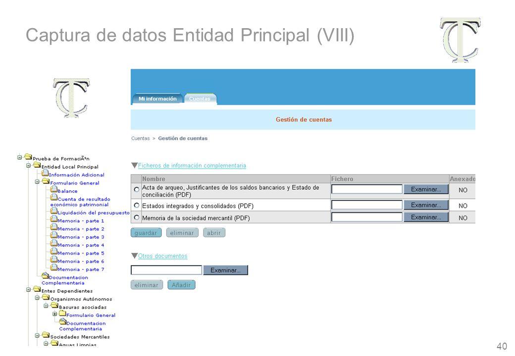 40 Captura de datos Entidad Principal (VIII)